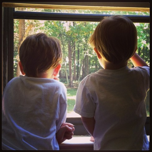 My boys watching for falling leaves and enjoying the cool breeze Sunday morning.
